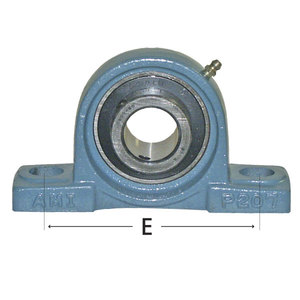 AMI Bearing 2-Bolt Pillow Block 1in